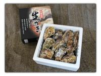 江田島産 殻付かき2kg