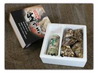 江田島産生かき むき身500g殻付かき1kgセット