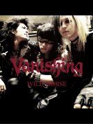 Vanishing/WILD HORSE/ CD