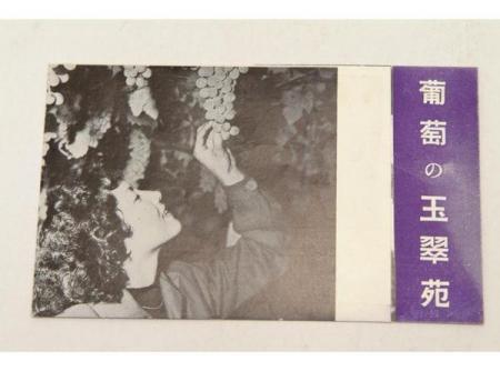 パンフ☆葡萄の玉翠苑(アルプスの見える葡萄園)☆(送料無料)