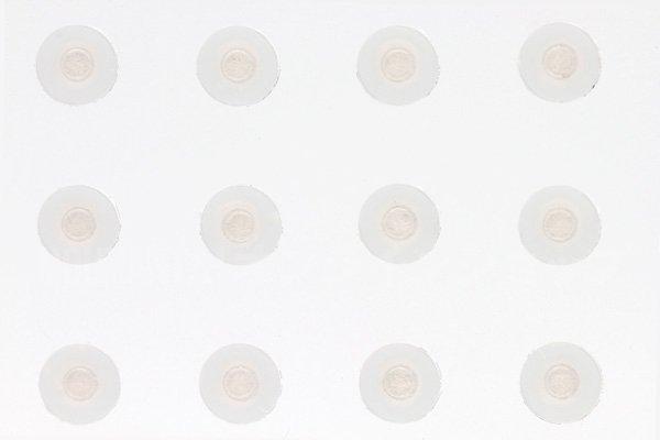 【ネコポス送料無料】Apple iPhone5 浸水検知シール(液晶裏)  [1]