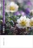 天国での再会(日本におけるキリスト教葬儀式文のインカルチュレーション)