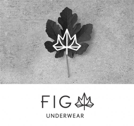 FIG(フィグ)