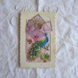 刺繍ポストカード孔雀ハンカチ小さなカード付