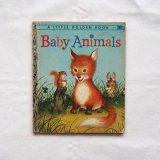 動物の赤ちゃん絵本1956年