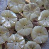 白蝶貝ボタン18個17.5ミリ花模様