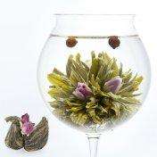 #22 鳳凰生蛋(ほうおうせいたん)フェニックス Phoenix 緑茶[黄山毛峰] とバラとさんざしの工芸茶
