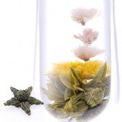 #96 櫻花恋歌(おうかれんか) 緑茶[黄山毛峰] と桜の工芸茶 SAKURA-SAKU