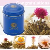 クロイソス工芸茶5種アソート缶−Congratulations(おめでとう)