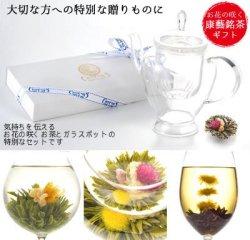 花の康藝銘茶[3種]ギフトBOX+アリエルポット[送料無料]