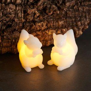 【SIRIUS】 Squirrel Evelyn 2pcs set H9 / シリウス / リス LEDライト(2個セット)
