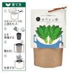 【国産】育てるスープちょこっと野菜作りキット(ホウレン草)