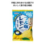 ノベルティ・粗品で人気の「つぶ塩レモンキャンディ70g」