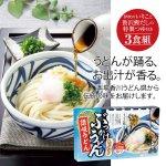 ノベルティ・粗品で人気の「 うどん県 讃岐うどん3食■ぶっかけうどん」