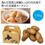 ノベルティ・粗品で人気の「 北海道産メークイン1.5kg」