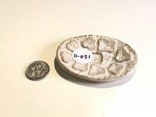 D051:道端のアピラの豆皿:元値2300円