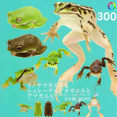 いきもん ネイチャーテクニカラーMONO PLUS トノサマガエルとシュレーゲルアオガエルとアマガエル 全6種フルセット TC0005