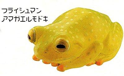 海洋堂 カプセルQミュージアム 財布にカエル「お財布蛙2」 フライッシュマンアマガエルモドキ KG00120