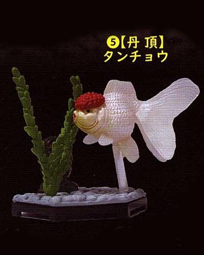 ビーム 金魚立体図鑑 フル彩色フィギュア  丹頂(タンチョウ) TC00523