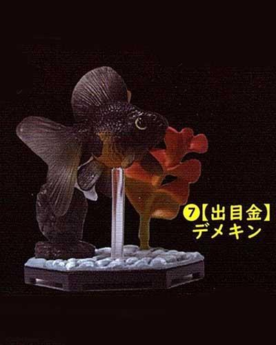 ビーム 金魚立体図鑑 フル彩色フィギュア  出目金(デメキン) TC00526