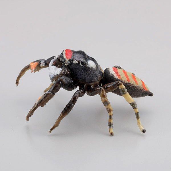 海洋堂 カプセルQミュージアム 日本の蜘蛛ストラップコレクション クモコレ! ヨダンハエトリ KG00563 2枚目