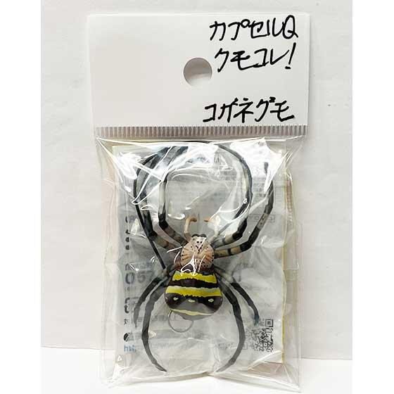 海洋堂 カプセルQミュージアム 日本の蜘蛛ストラップコレクション クモコレ! コガネグモ KG00565 3枚目