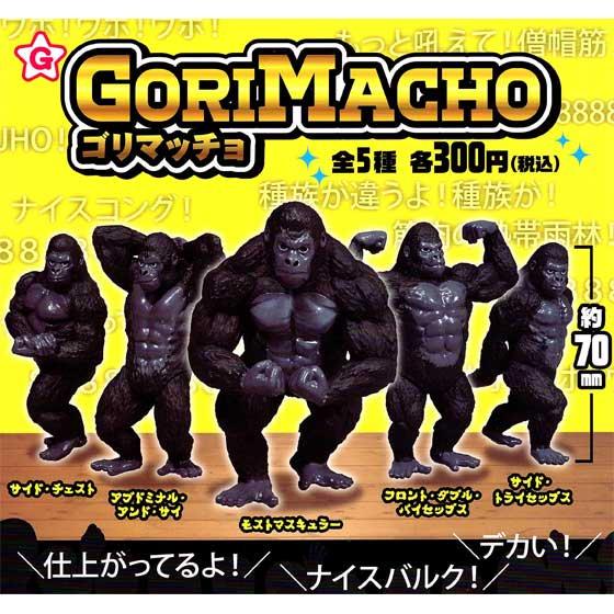 キタンクラブ ゴリマッチョ 全5種フルセット TC00830 1枚目