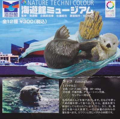 海遊館限定 NATURE TECHNI COLOUR 海遊館ミュージアム ラッコ TC0098