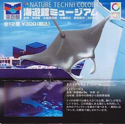 海遊館限定 NATURE TECHNI COLOUR 海遊館ミュージアム オニイトマキエイ TC0099