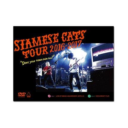 シャムキャッツ_LIVE&DOCUMENT DVD