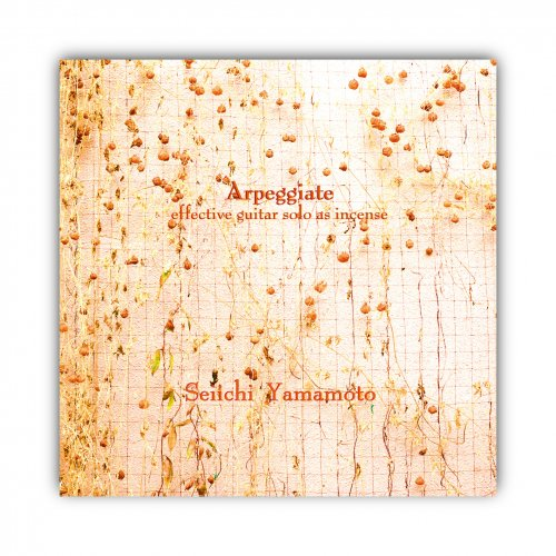 ROVO_山本精一 [Arpeggiate]CD-R