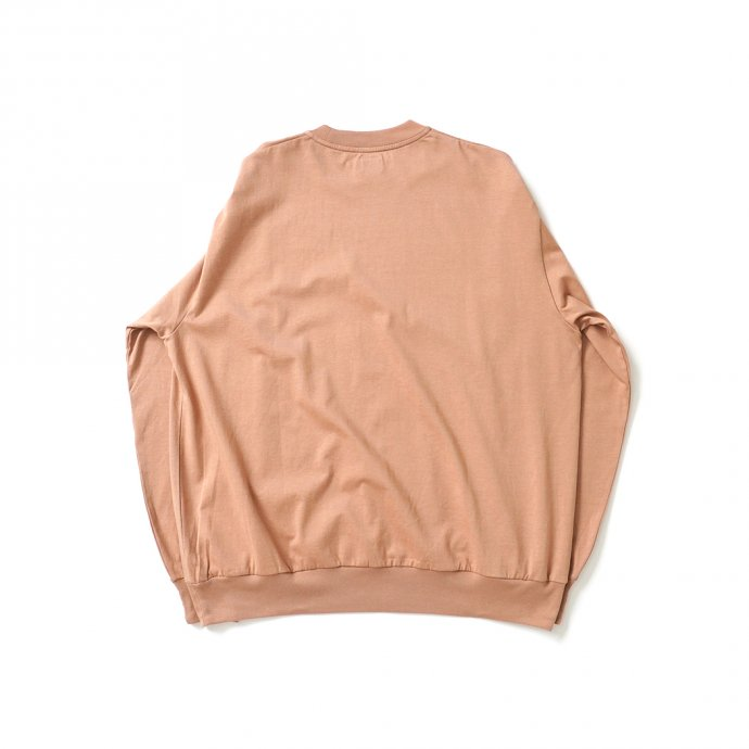 162159850 blurhms ROOTSTOCK / Silk Cotton 20/80 Crew-neck BIG L/S - PinkBeige シルクコットンクルーネックカットソー ROOTS2107F21 02