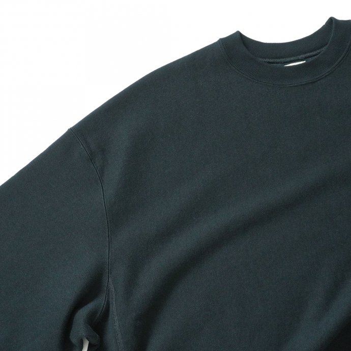 162941366 blurhms ROOTSTOCK / Soft & Hard Sweat Crew-neck P/O Big - BlackGreen ROOTS21F18 02