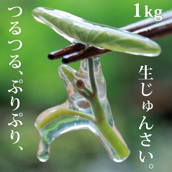 生じゅんさい1kg【季節限定!採れたて!日本一のじゅんさいの産地秋田県三種町のじゅんさいです。】