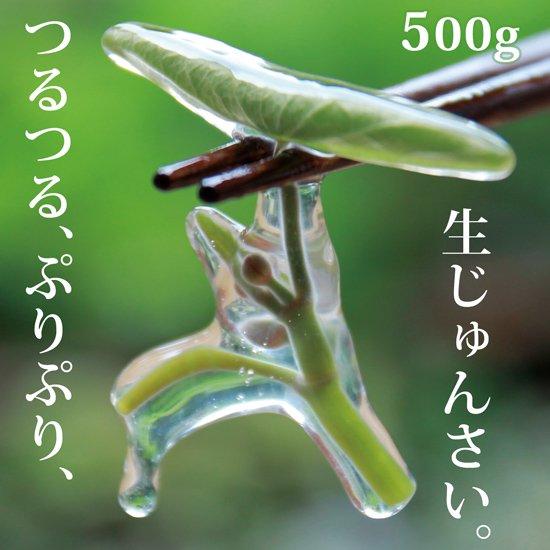 生じゅんさい500g【季節限定!採れたて!日本一のじゅんさいの産地秋田県三種町のじゅんさいです。】