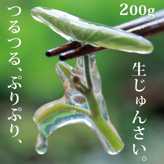 生じゅんさい200g【季節限定!採れたて!日本一のじゅんさいの産地秋田県三種町のじゅんさいです。】