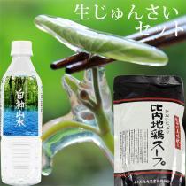 生じゅんさい1kgセット【比内地鶏スープ・白神山水・ゆずタレ】