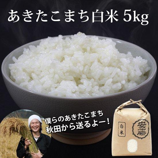 新米あきたこまち 白米 5kg 秋田県産【令和2年(2020年)秋収穫】