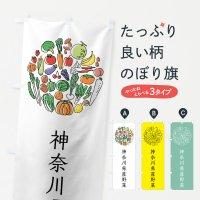 のぼり 神奈川県産野菜 のぼり旗