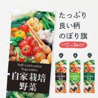 のぼり 自家栽培野菜 のぼり旗