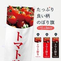 のぼり トマト狩り のぼり旗