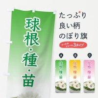 のぼり 球根・種・苗 のぼり旗