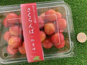 【先行予約】 さくらんぼ2品種食べ比べセット 250g×2パック