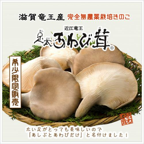 足太あわび茸(生)家庭用1kg(滋賀竜王産)