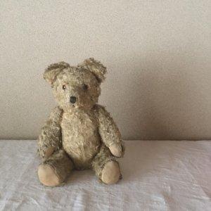ハンガリー ぷっくり テディベアー グラスアイ ベージュ hungary teddy bear old vintage glass eyes