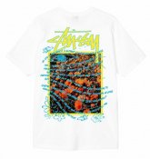 <img class='new_mark_img1' src='https://img.shop-pro.jp/img/new/icons15.gif' style='border:none;display:inline;margin:0px;padding:0px;width:auto;' />STUSSY <BR>Super Bloom Tee(WHITE)