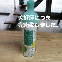 <img class='new_mark_img1' src='https://img.shop-pro.jp/img/new/icons51.gif' style='border:none;display:inline;margin:0px;padding:0px;width:auto;' />フィルターインボトル<br>ハワイアン グリーン<br>