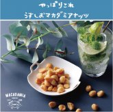 マカロナッツ うすしお 65g