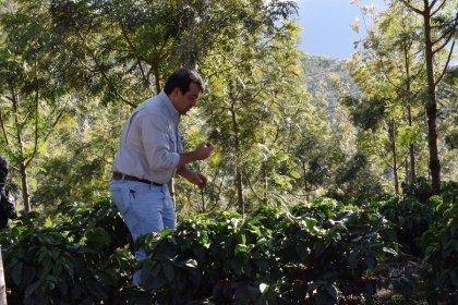 GUATEMALA / ANTHIGUA SAN JUAN BOURBON DARKROAST(グアテマラ アンティグア サン・ファン農園 ブルボン種 深煎り)