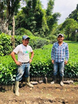 GUATEMALA/SAN DIEGO BUENA VISTA GEISHA 100g(グアテマラ サン・ディエゴ ブエナ・ビスタ ゲイシャ) 100g